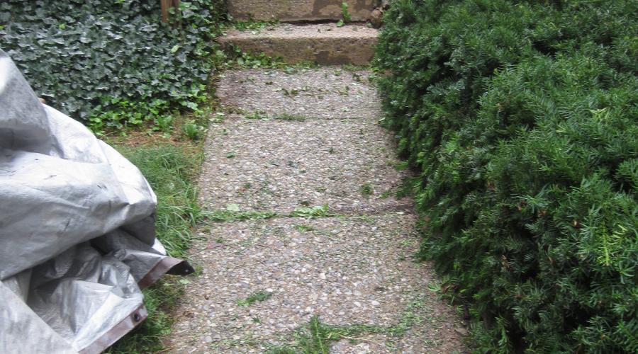 Custom Stonework - Walkway (before)